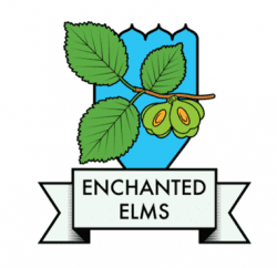 Enchanted Elms
