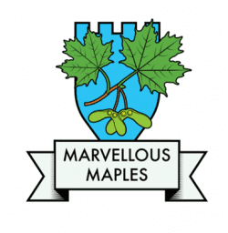 Marvellous Maples