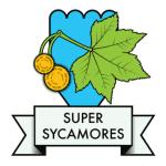 Sycamores