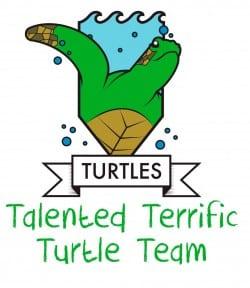 turtles-2016